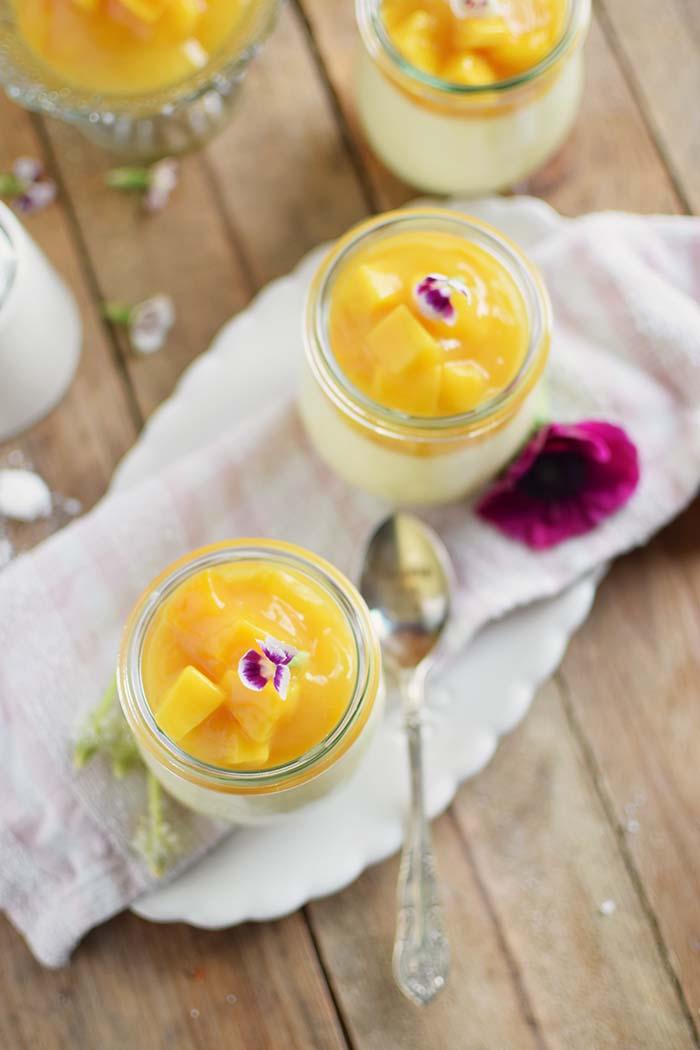 Joghurt Panna Cotta mit Lieblingssaft und Mango Salat - Yogurt Panna Cotta with Mango Salad (11)