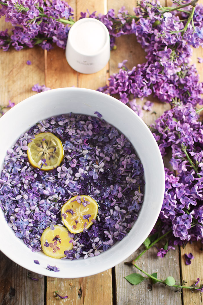 Flieder Blueten Sirup - Lilac Syrup - Fliedersirup (10)