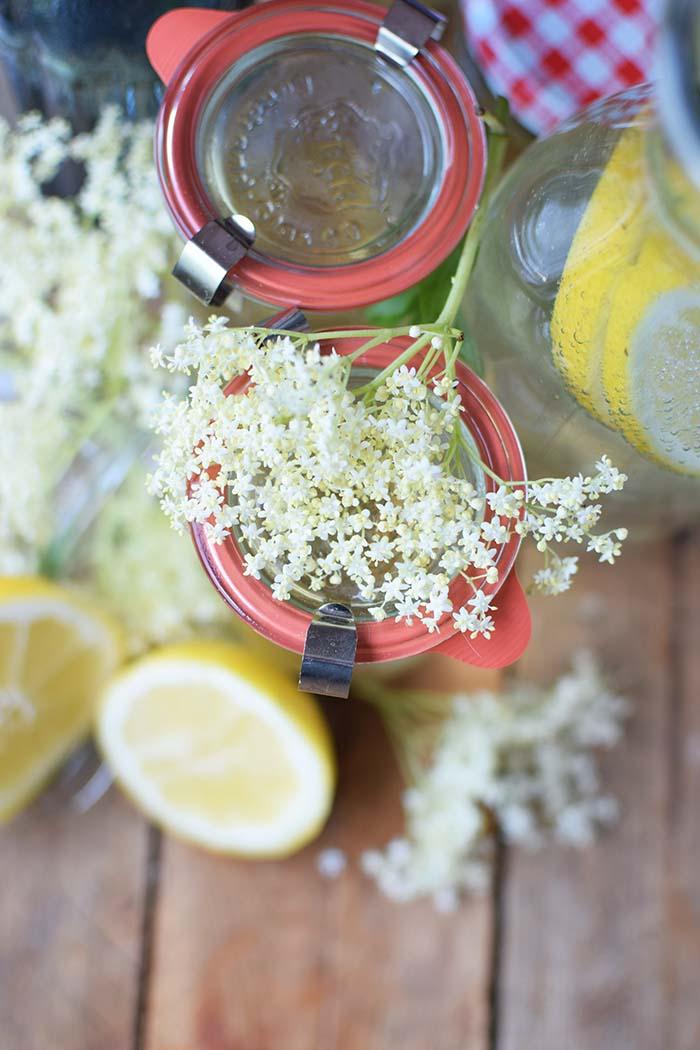 Holunderblueten Sirup & Schorle - Elderflower Cordial & Lemonoade (10)
