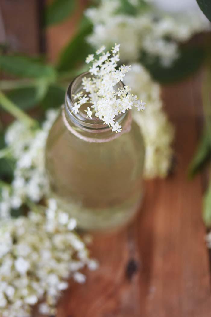 Holunderblueten Sirup & Schorle - Elderflower Cordial & Lemonoade (7)