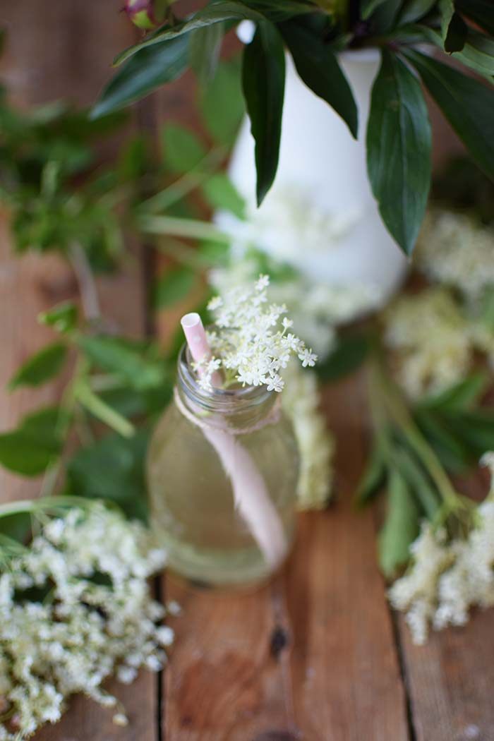 Holunderblueten Sirup & Schorle - Elderflower Cordial & Lemonoade (9)