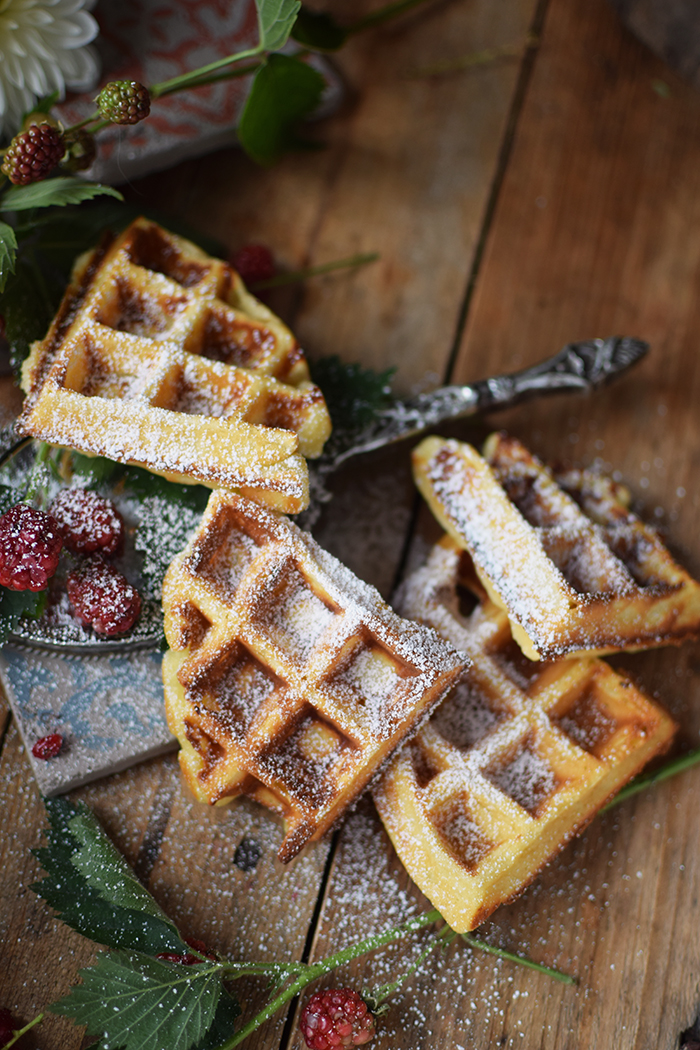 Beeren Waffel Tiramisu - Berry Waffle Tiramisu (12)