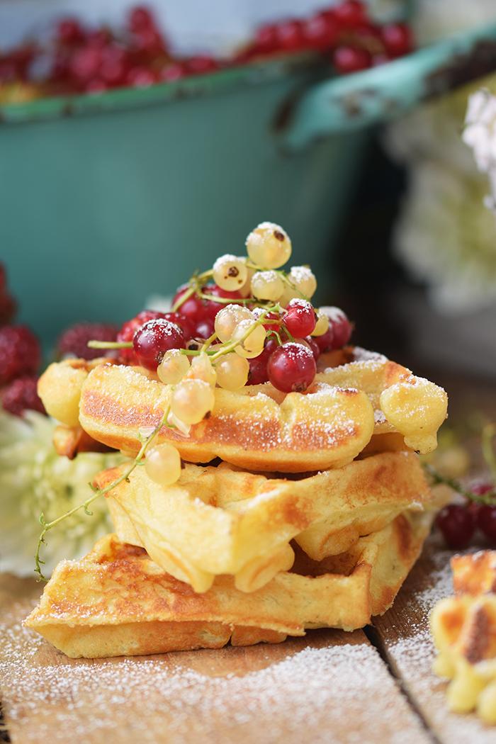 Beeren Waffel Tiramisu - Berry Waffle Tiramisu (17)