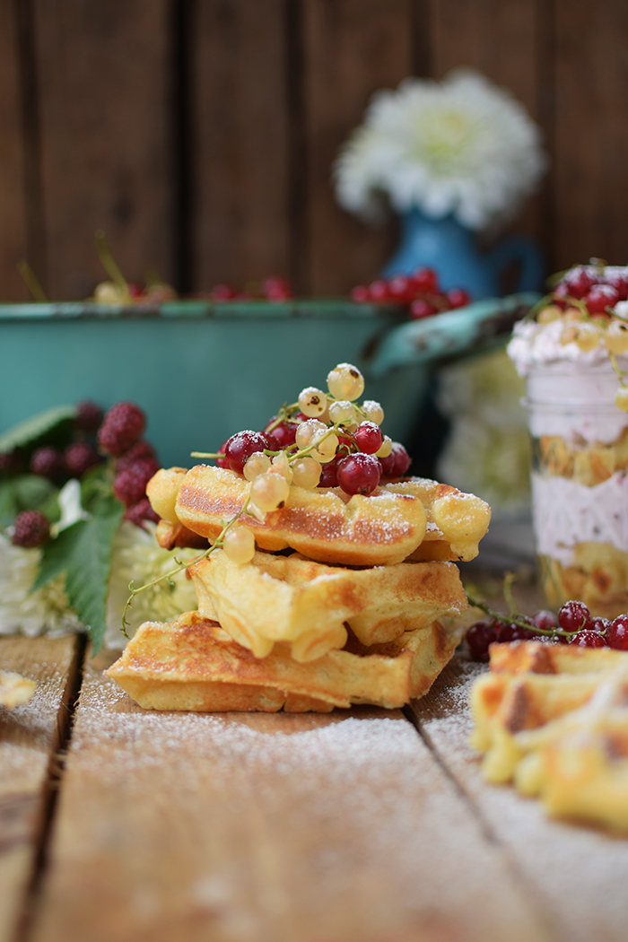 Beeren Waffel Tiramisu - Berry Waffle Tiramisu (4)