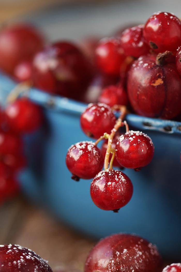Clafoutis Beeren Tarte - Clafoutis Berry Tart (12)