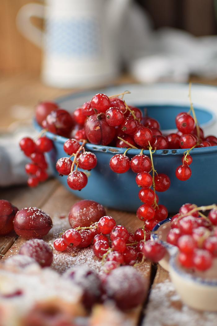 Clafoutis Beeren Tarte - Clafoutis Berry Tart (13)