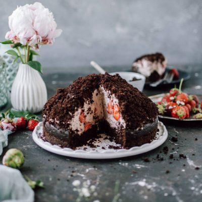 Maulwurfkuchen mit Erdbeeren und Schokocreme